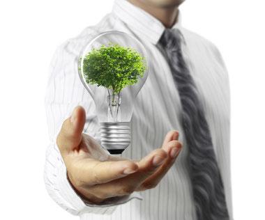 Nachhaltigkeit Ökologie-und-Umwelt