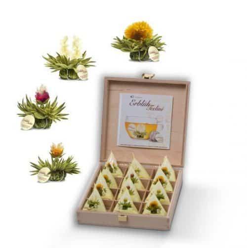Tee-Blume
